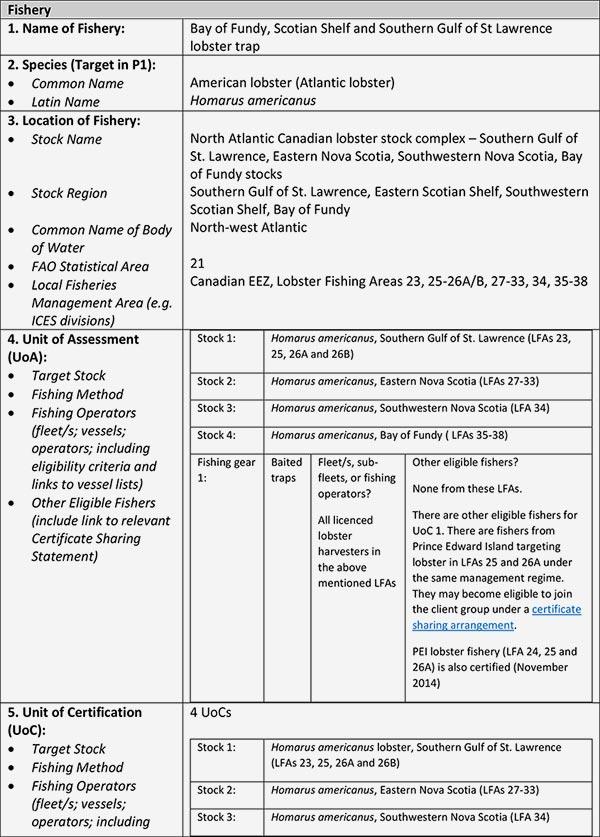 MSC Certification Info Sheet 1