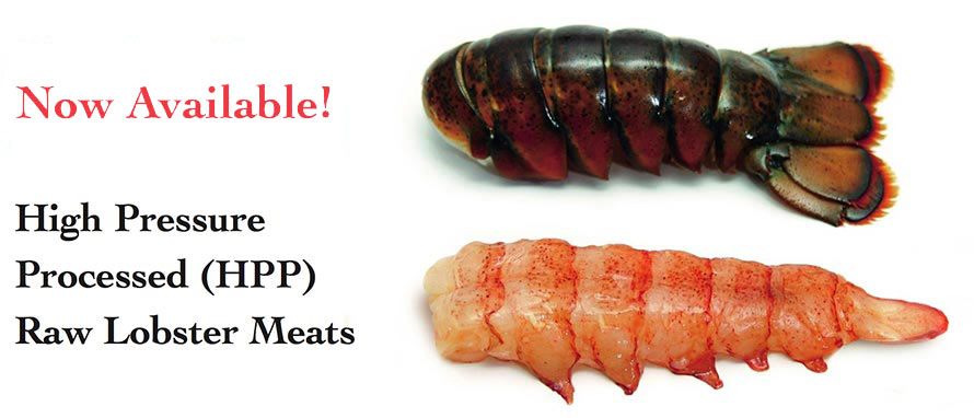 Now Available! High Preasure Processed (HPP) Raw Lobster Meats